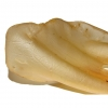oreilles-de-boeuf-1